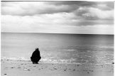 Normandie (26)