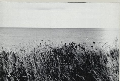 Normandie (38)f